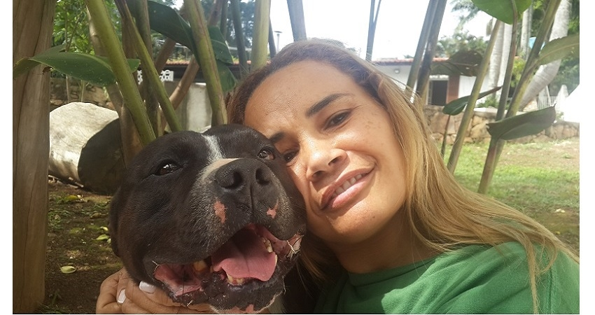 O TEMPERAMENTO DO STAFFORDSHIRE BULL TERRIER